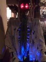 Life Size Skeleton - Prop Hire from The Props List